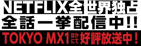 NETFLIX全世界独占全話一挙配信中!!TOKYO MX1ほかにて好評放送中!